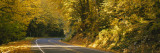 Highway Passing through a Forest, Mount Baker-Snoqualmie National Forest, Washington State, USA Wall Decal by  Panoramic Images