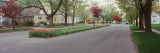 Street in the City, Holland, Michigan, USA Wall Decal by  Panoramic Images