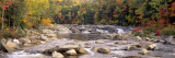 River Flowing through the Wilderness, White Mountains National Forest, New Hampshire, USA Wall Decal by Panoramic Images