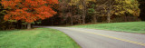 Road Crossing through a Forest, Blue Ridge Parkway, Virginia, USA Wall Decal by  Panoramic Images