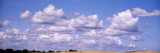 Clouds over a Corn Field, Germany Wall Decal by  Panoramic Images