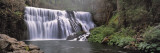 Waterfall in a Forest, Middle Falls of the Mccloud River, California, USA Wall Decal by  Panoramic Images