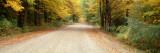 Road Passes through a Forest, Leland, Michigan, USA Wall Decal by  Panoramic Images