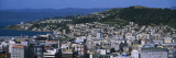 Cityscape, Wellington, North Island, New Zealand Wall Decal by  Panoramic Images