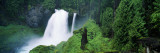Waterfall in Lush Green Forest Wall Decal by  Panoramic Images