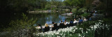 Group of People Sitting on Benches near a Pond, Central Park, Manhattan, New York, USA Wall Decal by  Panoramic Images