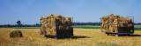 Heap of Hay Bales in Horse Carts, Grand Rapids, Kent County, Michigan, USA Wall Decal by  Panoramic Images