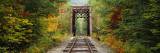 Railroad Track Passing Through a Forest, White Mountain National Forest, New Hampshire, USA Wall Decal by  Panoramic Images
