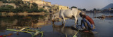 Mature Man Washing Clothes at a Riverbank, Amber Fort, Jaipur, Rajasthan, India Wall Decal by  Panoramic Images