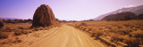 Dirt Road Passing through an Arid Landscape, Californian Sierra Nevada, California, USA Wall Decal by  Panoramic Images