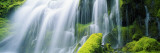Close-Up of Waterfall on Moss Covered Rocks Wall Decal by  Panoramic Images