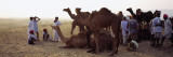 Group of People with Their Camels in a Fair, Pushkar Camel Fair, Pushkar, Rajasthan, India Wall Decal by  Panoramic Images