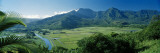 Taro Fields, Hanalei Valley, Kauai, Hawaii, USA Wall Decal by  Panoramic Images