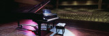Grand Piano on a Concert Hall Stage, University of Hawaii, Hilo, Hawaii, USA Wall Decal by  Panoramic Images