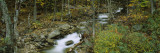 Stream Passing Through Forest, New Hampshire, USA Wall Decal by  Panoramic Images