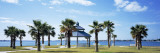 Shade and Palm Trees in a Park, Bayfront Park, Sarasota Bay, Sarasota, Florida, USA Wall Decal by  Panoramic Images