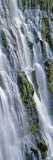 Burney Falls, Mcarthur-Burney Falls Memorial State Park, California, USA Wall Decal by  Panoramic Images