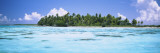 Palm Trees on an Island, Tuamotu Archipelago, Tahiti, French Polynesia Wall Decal by  Panoramic Images