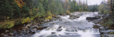 River Flowing Through a Forest, Black River, Adirondack Mountains, New York, USA Wall Decal by  Panoramic Images