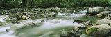 Little Pigeon River, Great Smoky Mountains National Park, Tennessee, USA Wall Decal by  Panoramic Images