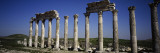 Old Ruins of Cardo Maximus, Apamea, Syria Wall Decal by  Panoramic Images