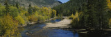 Cache La Poudre River, Colorado, USA Wall Decal by  Panoramic Images