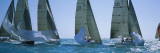 Sailboat Racing in the Ocean, Key West, Florida, USA Wall Decal by Panoramic Images 