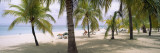Sunning Tourists on 7-Mile Beach, Negril, Jamaica Wall Decal by Panoramic Images