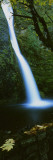 Horsetail Falls, Columbia River Gorge National Scenic Area, Oregon, USA Wall Decal by  Panoramic Images