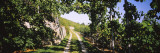 Gravel Road Passing Through Vineyards, Vaihingen an Der Enz, Baden-Wurttemberg, Germany Wall Decal by  Panoramic Images