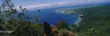 Mule on the Beach, Pacific Ocean, Kalaupapa, Molokai, Hawaii, USA Wall Decal by  Panoramic Images