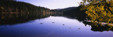Ducks Swimming in a Lake, Black Forest, Baden-Wurttemberg, Germany Wall Decal by  Panoramic Images