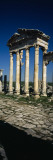 Old Ruins of a Built Structure, Entrance Columns, Apamea, Syria Wall Decal by  Panoramic Images