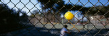 Tennis Ball Stuck in a Fence, San Francisco, California, USA Wall Decal by  Panoramic Images