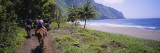 Men Riding Mules, Pacific Ocean, Kalaupapa, Molokai, Hawaii, USA Wall Decal by  Panoramic Images