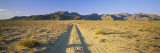 Dirt Road Running Through a Landscape, Uvurkhangai Aimag, Independent Mongolia Wall Decal by  Panoramic Images