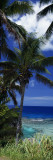 Palm Trees on Island Coast, Blue Ocean Water, Nive Island, South Pacific Wall Decal by Panoramic Images 