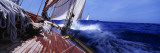 Yacht Race Wall Decal by  Panoramic Images