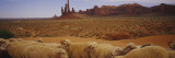 Flock of Sheep in an Arid Landscape, Monument Valley Tribal Park, USA Wall Decal by  Panoramic Images