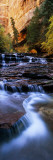 Waterfall in a Forest, North Creek, Zion National Park, Utah, USA Wall Decal by  Panoramic Images