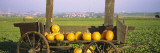 Pumpkins in a Wooden Cart, Baden-Wurttemberg, Germany Wall Decal by Panoramic Images 