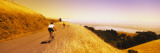 Cyclists on a road, Mt. Tamalpais, Marin County, California, USA Wall Decal by  Panoramic Images