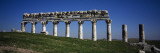 Columns on a Landscape, Apamea, Syria Wall Decal by  Panoramic Images