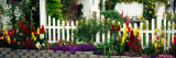 Flowers and Picket Fence in a Garden, La Jolla, San Diego, California, USA Wall Decal by  Panoramic Images