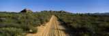 Dirt Road Passing Through a Landscape, Kouebokkeveld, Western Cape Province, South Africa Wall Decal by  Panoramic Images