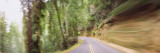 Road Passing Through a Landscape, Marin County, California, USA Wall Decal by  Panoramic Images