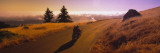 View of a Motorcycle Moving on a Road, Mt Tamalpais, Marin County, California, USA Wall Decal by  Panoramic Images