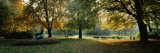 Trees in a Formal Garden, Le Jardin Du Luxembourg, Paris, France Wall Decal by  Panoramic Images