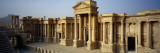 Facade of a Building, Palmyra, Syria Wall Decal by Panoramic Images