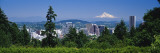 Mt Hood Portland Oregon, USA Wall Decal by  Panoramic Images